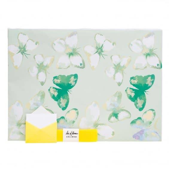 blister-1-fg-carta-smaltata-nastro-regalo-chiudipacco-linea-maddy-verde